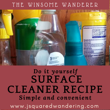 Do It Yourself surface cleaner - The Winsome Wanderer
